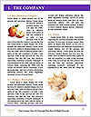 0000063161 Word Templates - Page 3