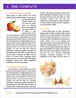0000063161 Word Template - Page 3