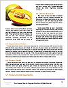 0000063161 Word Templates - Page 4