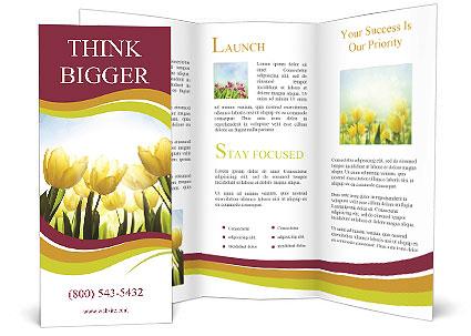 0000063169 Brochure Templates