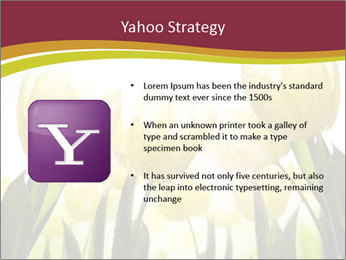 0000063169 PowerPoint Templates - Slide 11
