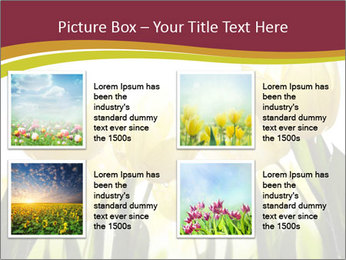 0000063169 PowerPoint Templates - Slide 14