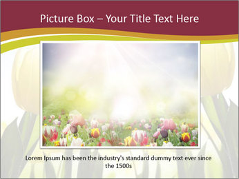 0000063169 PowerPoint Templates - Slide 15