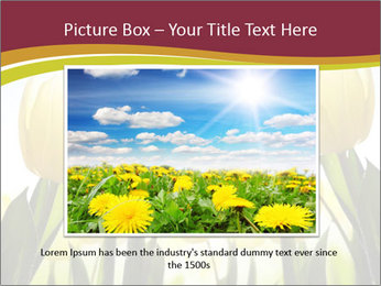 0000063169 PowerPoint Templates - Slide 16
