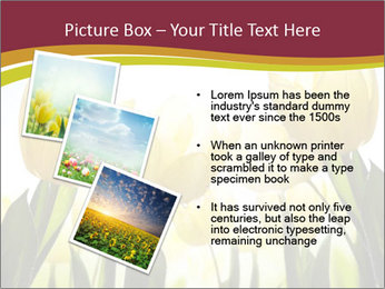 0000063169 PowerPoint Templates - Slide 17