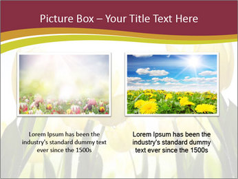 0000063169 PowerPoint Templates - Slide 18