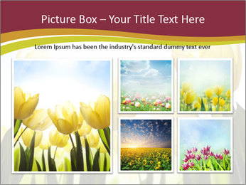 0000063169 PowerPoint Templates - Slide 19