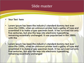 0000063169 PowerPoint Templates - Slide 2