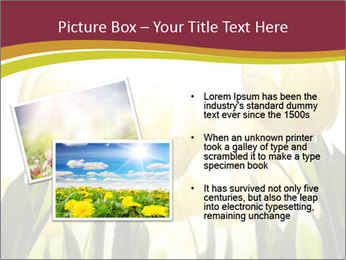 0000063169 PowerPoint Templates - Slide 20
