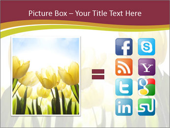 0000063169 PowerPoint Templates - Slide 21