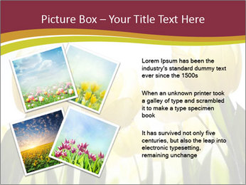 0000063169 PowerPoint Templates - Slide 23