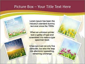 0000063169 PowerPoint Templates - Slide 24
