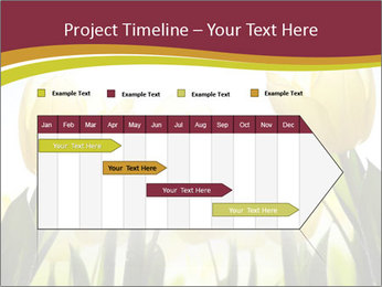 0000063169 PowerPoint Templates - Slide 25