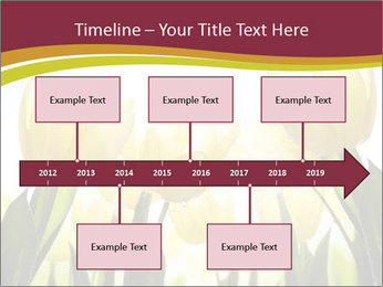 0000063169 PowerPoint Templates - Slide 28