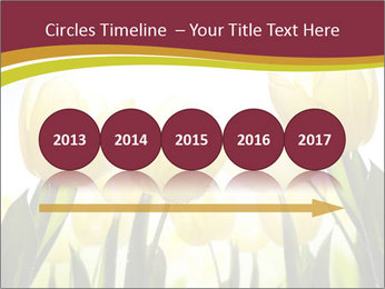 0000063169 PowerPoint Templates - Slide 29