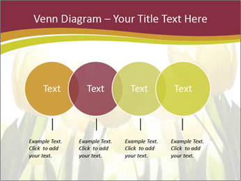 0000063169 PowerPoint Templates - Slide 32