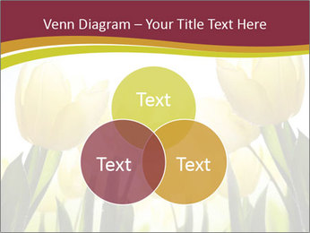 0000063169 PowerPoint Templates - Slide 33
