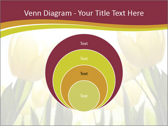 0000063169 PowerPoint Templates - Slide 34