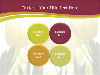 0000063169 PowerPoint Templates - Slide 38