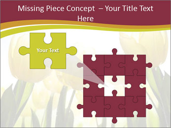 0000063169 PowerPoint Templates - Slide 45