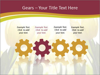 0000063169 PowerPoint Templates - Slide 48