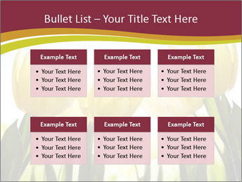 0000063169 PowerPoint Templates - Slide 56