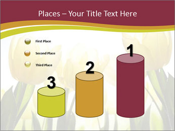 0000063169 PowerPoint Templates - Slide 65