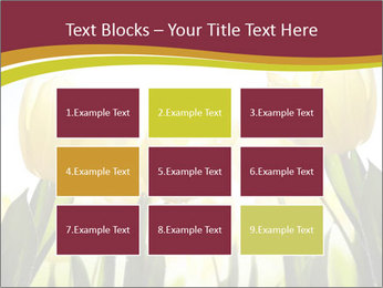 0000063169 PowerPoint Templates - Slide 68
