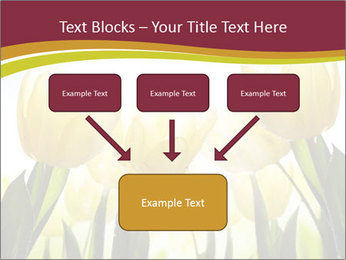 0000063169 PowerPoint Templates - Slide 70