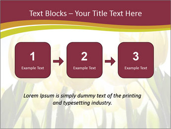 0000063169 PowerPoint Templates - Slide 71