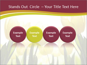 0000063169 PowerPoint Templates - Slide 76