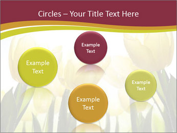 0000063169 PowerPoint Templates - Slide 77