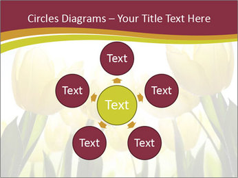 0000063169 PowerPoint Templates - Slide 78