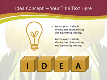 0000063169 PowerPoint Templates - Slide 80