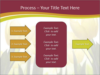 0000063169 PowerPoint Templates - Slide 85