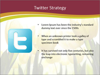 0000063169 PowerPoint Templates - Slide 9