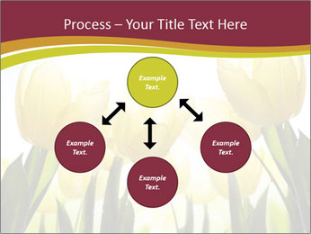0000063169 PowerPoint Templates - Slide 91