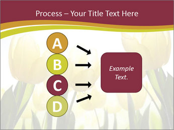 0000063169 PowerPoint Templates - Slide 94