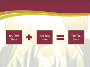 0000063169 PowerPoint Templates - Slide 95