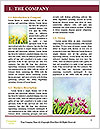 0000063169 Word Template - Page 3