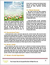 0000063169 Word Template - Page 4