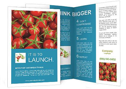 0000063172 Brochure Template