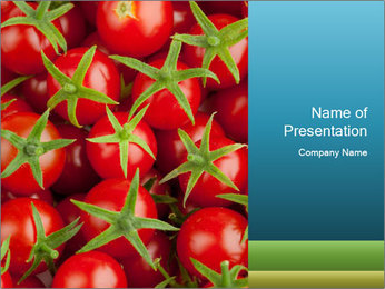 0000063172 PowerPoint Template - Slide 1