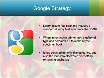 0000063172 PowerPoint Templates - Slide 10
