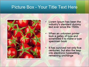 0000063172 PowerPoint Template - Slide 13