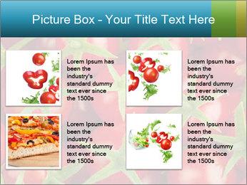 0000063172 PowerPoint Templates - Slide 14