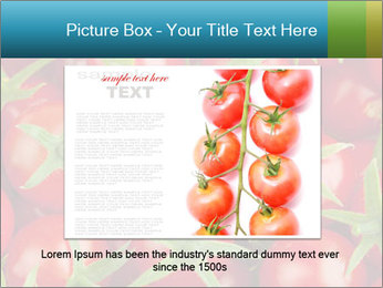 0000063172 PowerPoint Template - Slide 15