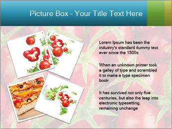 0000063172 PowerPoint Template - Slide 23