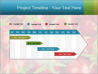 0000063172 PowerPoint Templates - Slide 25