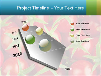 0000063172 PowerPoint Template - Slide 26